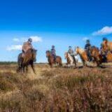 På hesteryg gennem Nationalpark Thy